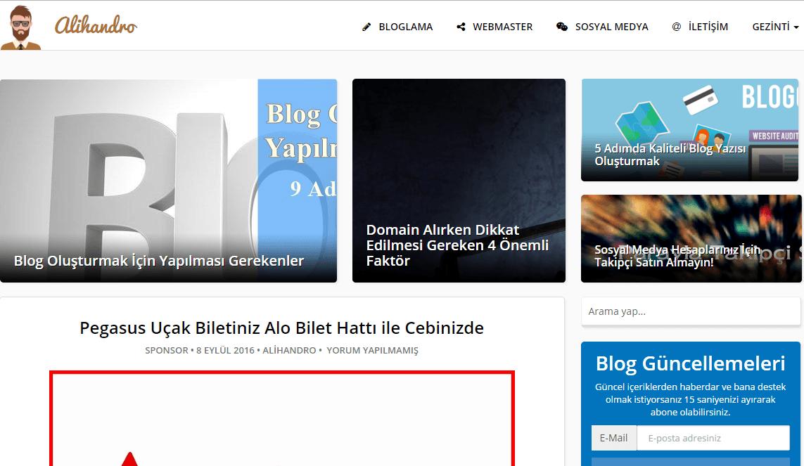 alihandro WordPress Blog Teması