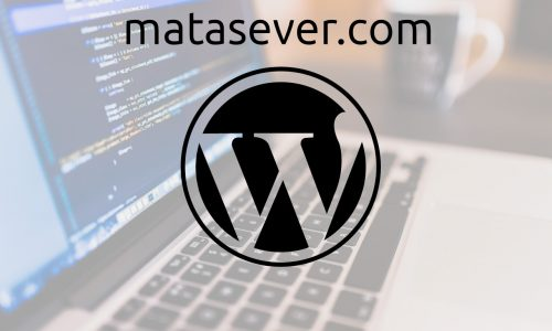 WordPress Yorum Kısmındaki Site Adresini Kaldırmak