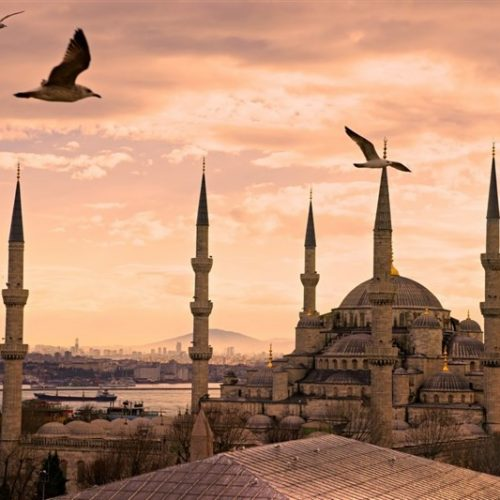 En Çok Kullanılan Dini Forum Sitesi