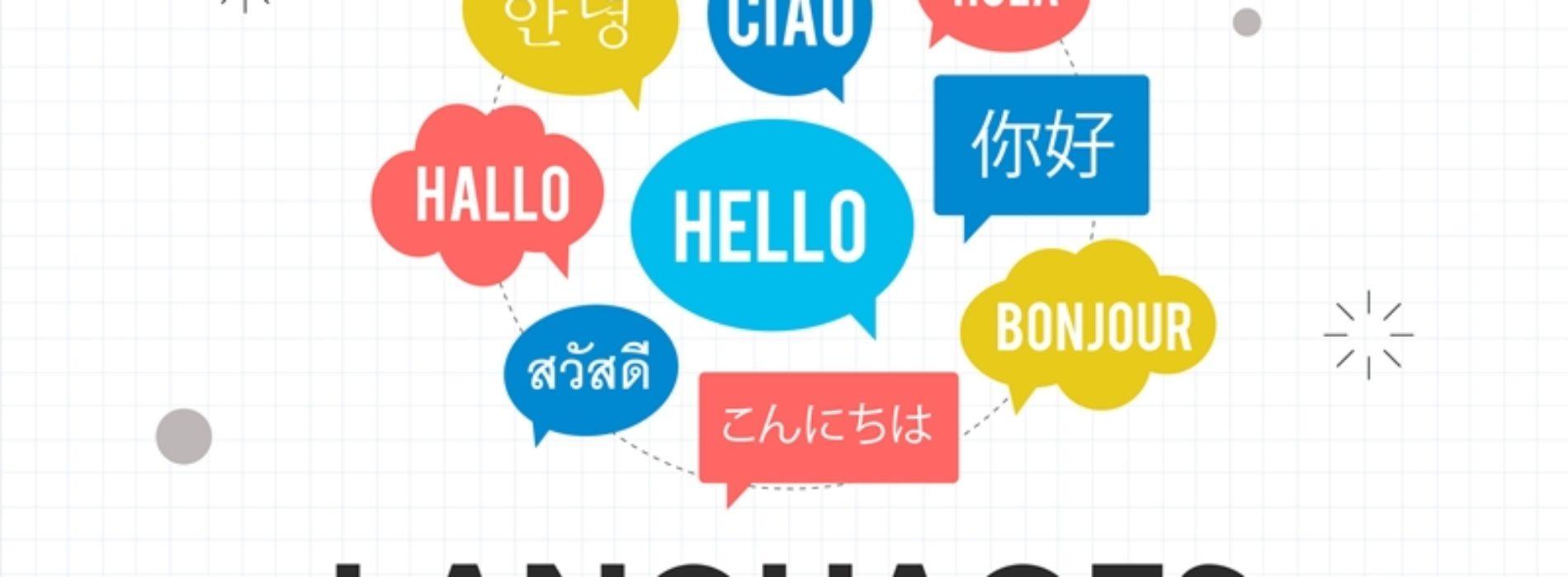 Çok Dilde Makale Hizmeti İle Globale Açılın